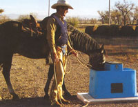 Automatic Water Feeders for Horses and other livestock